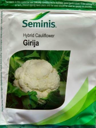 Cauliflower Girija-10gm